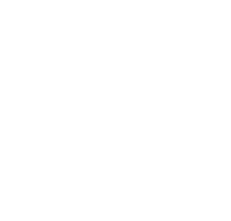 RO Insurance